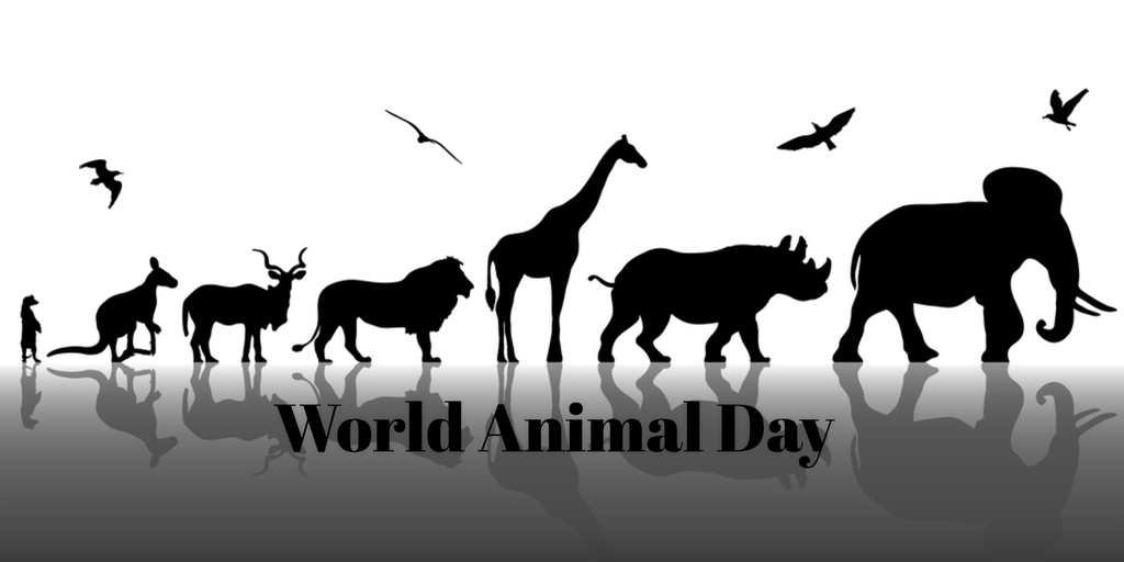 world animal day in 2018 2019 when where why how is celebrated