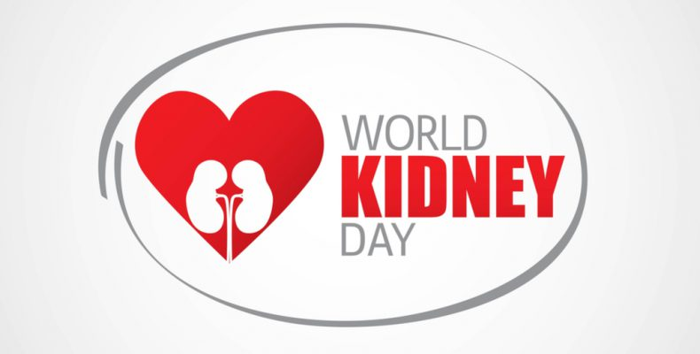 World Kidney Day In 20182019 When Where Why How Is Celebrated