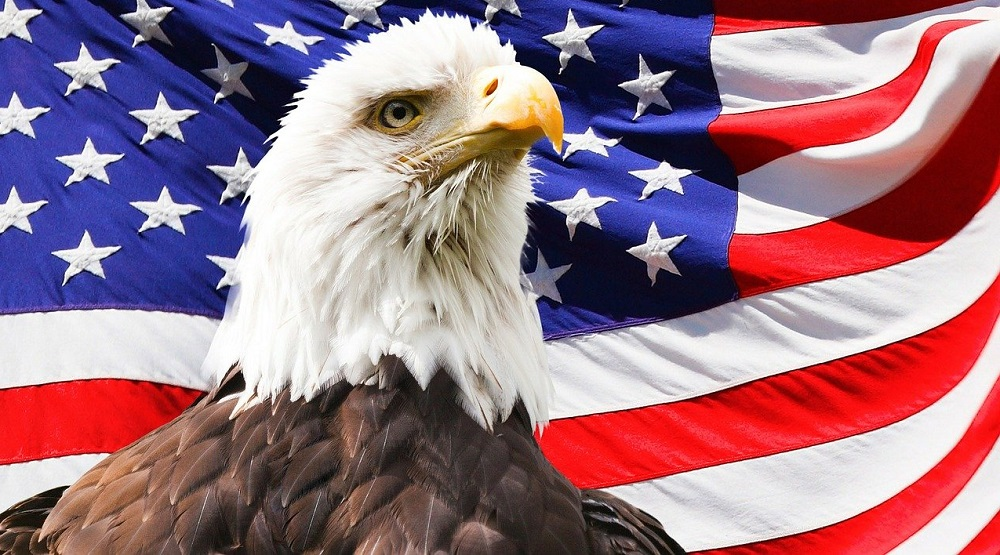 American eagle htc one wallpaper - Best htc one wallpapers